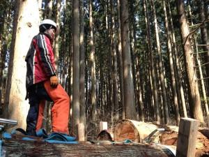 森の作業日2014冬③