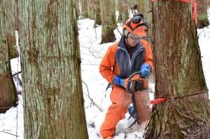 湯守の森キックオフ伐採⑨